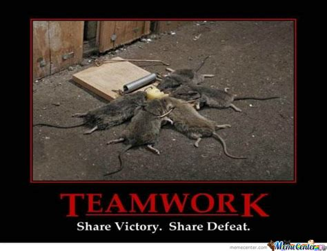 Teamwork Meme - teamwork meme related keywords teamwork meme long tail