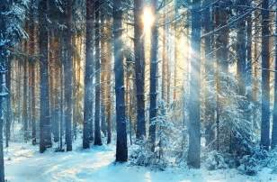 winter solstice how to celebrate the return of light