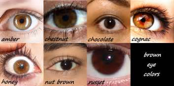 brown eye colors blue brown reference green basic but yeah