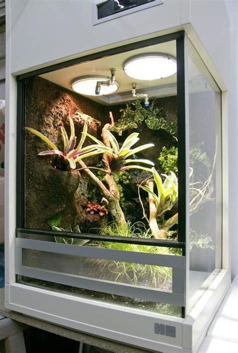 terrarium beleuchtung einbauen terrarium f 252 r pfeilgiftfr 246 sche dendrobaten 50x50x90cm