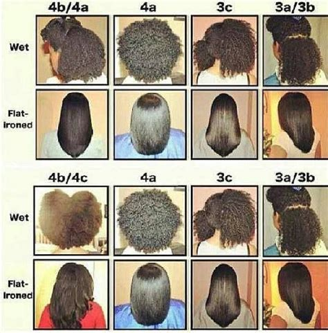Hair Types Chart For Black by 17 Best Ideas About Hair Type Chart On