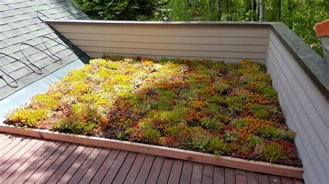 Aspen, Colorado, Green Roof  Intermountain Roofscape