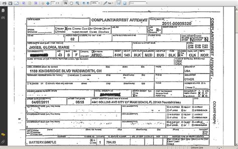arrest report template 28 images report template