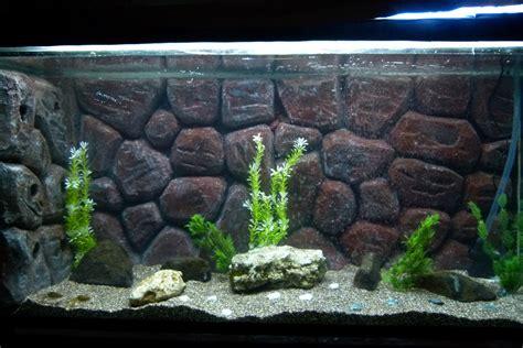 Handmade Aquarium - cichlids rabee3 new diy aquarium