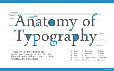 typography basics type terminology at design lab