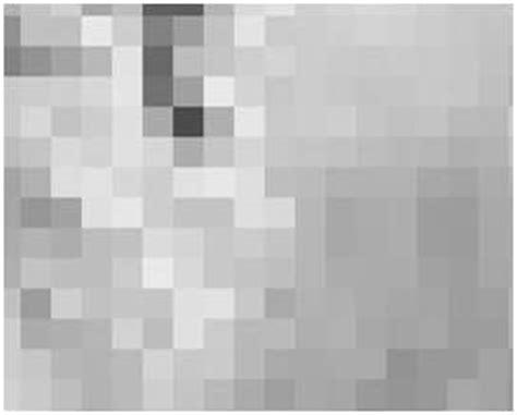 tutorialspoint photoshop pixel