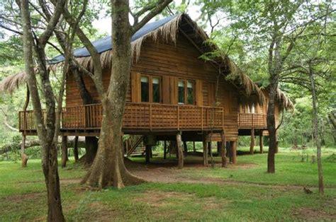 tree cottages toc sri lanka