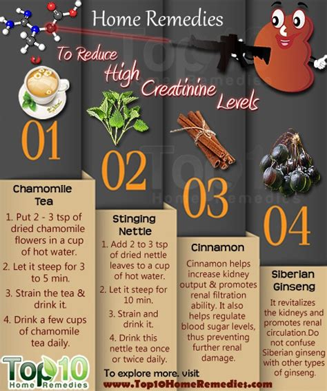 creatine uti home remedies to reduce high creatinine levels top 10