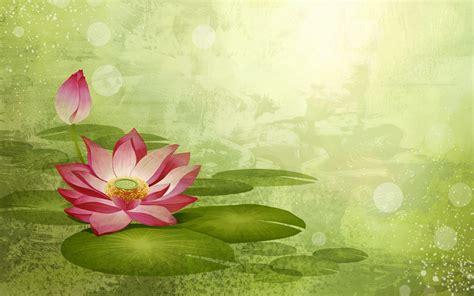 wallpaper lotus flower design lotus flower backgrounds wallpaper cave