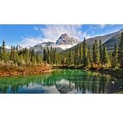 Lake Forest Mountain Canada Summer Snowy Peak Green