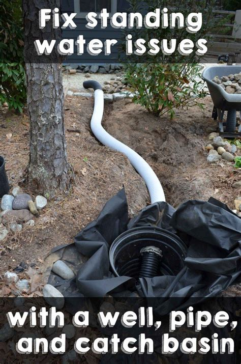 catch basin in backyard fix standing water issues with a well pipe and catch basin crafty 2 the core diy
