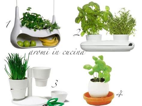 piante aromatiche in cucina piante aromatiche aboutgarden