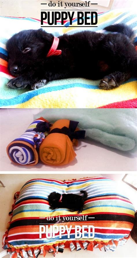 Khimar Simpel Mutiara Non Pet 10 best care accessories images on crafts doggies and diy