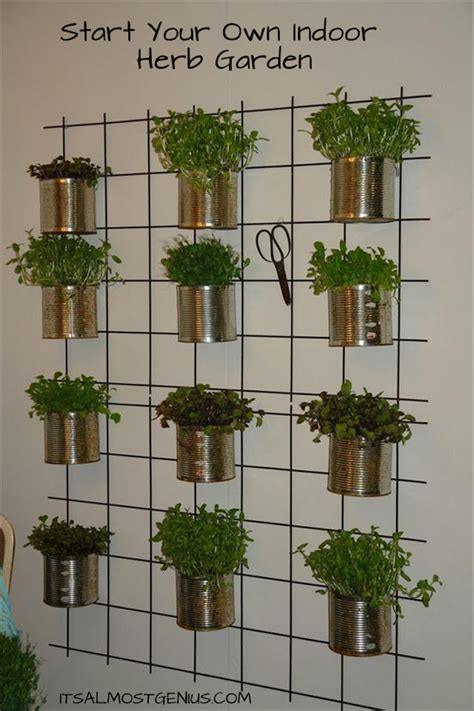 herb wall 10 easy diy kitchen herb gardens room bath