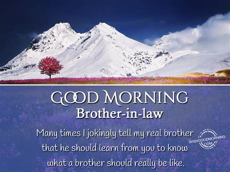 in law good morning wishes for brother in law pictures images