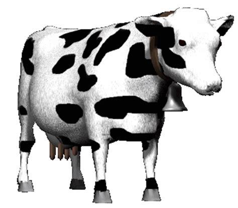 imagenes con movimiento vacas 1 planificacion animarce