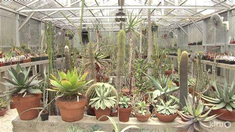 cactus  succulent garden  greenhouses bob barth