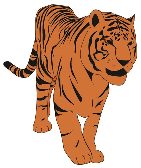 clipart tiger tiger clipart clipartion
