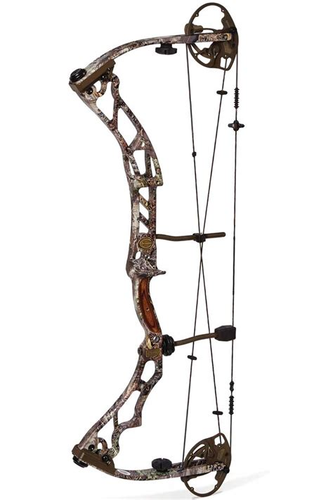 best compound bows the best new compound bows for 2014 american whitetail