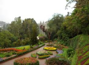 Botanical Garden In India Travel India Ooty Botanical Garden In Ooty