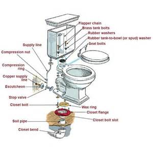 How Do You Replace A Kitchen Faucet Basement Toilet Installation