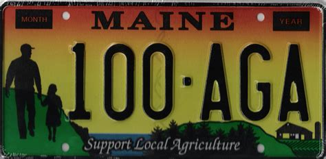 maine of state maine government license