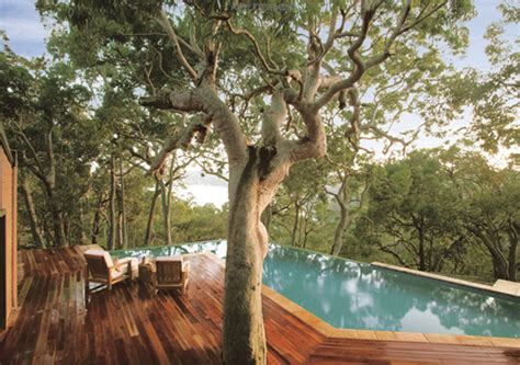 wooden beach house designs wooden beach house design with view of the forest