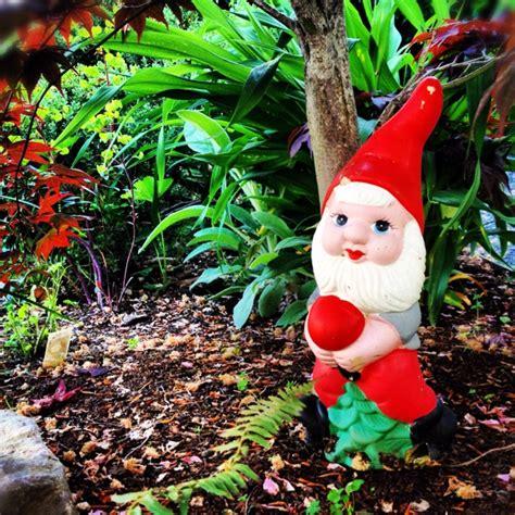 cute garden gnomes my cute garden gnome gnomelandia pinterest