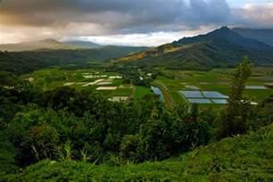 hanalei valley sunrise hanalei kauai hawaii