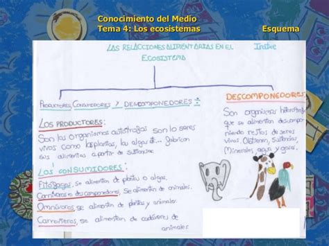 conocimiento medio andalucia 6 de conocimiento medio 6 186 de primaria tema 4 los ecosistemas esquem