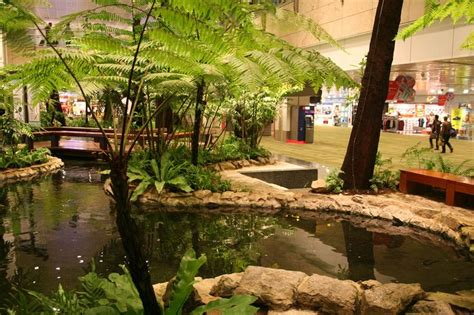 indoor pond 35 best images about indoor pond on pinterest gardens