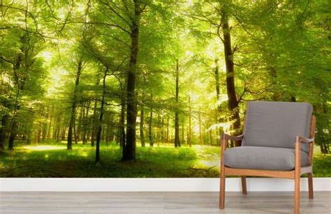 Forest Wall Mural Wallpaper green oak forest wallpaper wall mural muralswallpaper co uk