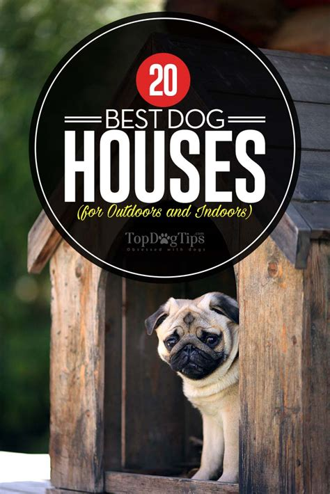 best dog for house top 20 best dog houses for outdoors and indoors in 2018