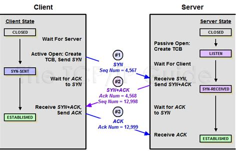 find pattern sequence numbers tcp ip sequence diagram repair wiring scheme
