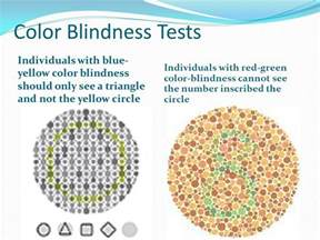 blue yellow color blind test human color perception ppt