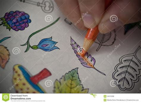 coloring books for adults with pencils coloring book stock photo image of image book painting