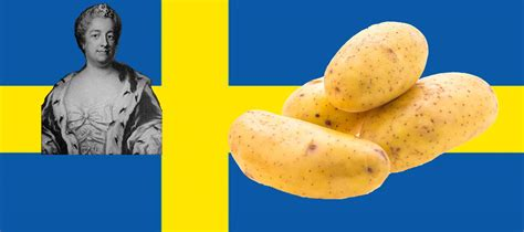 eva ekeblad book swedish countess eva ekeblad swedish freak