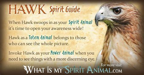 hawk symbolism meaning spirit animal quiz power