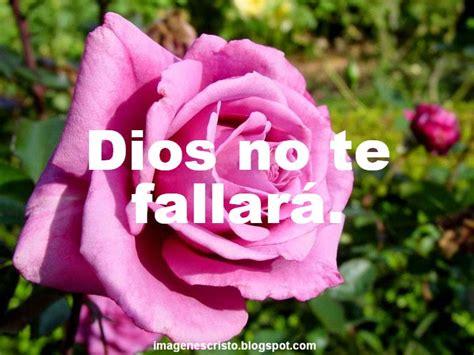 imagenes de rosas con frases cristianas im 225 genes cristianas banco de imagenes imagenes