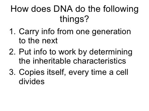 dna and rna section 12 1 answers chapter 12 1 dna and rna answer key prentice hall workbook