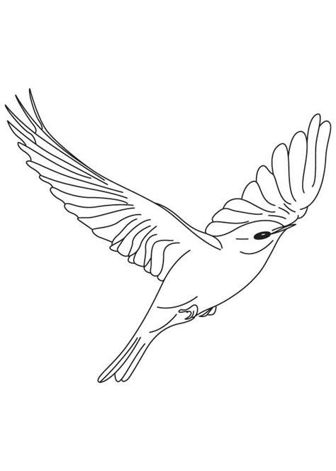 cartoon birds flying kids coloring