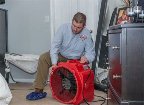 bed bug heat treatment effectiveness preparing for a bed bug heat treatment