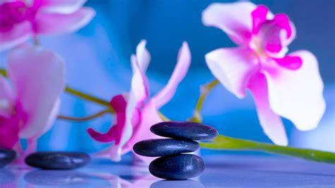 imagenes zen 8 horas de m 250 sica relajante m 250 sica meditaci 243 n
