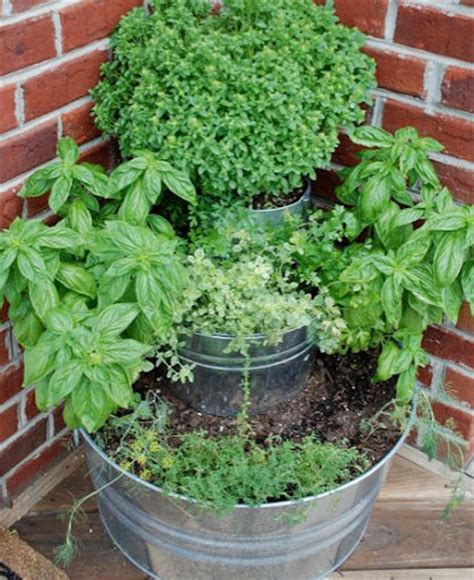 Herb Garden Planter Container by 50 Gardening Ideas Tips