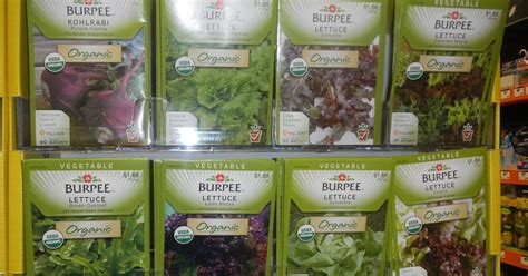 green roof growers starting seeds home depot offers