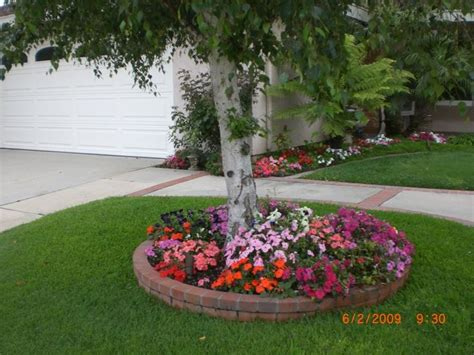Tree Landscaping Ideas Tree Landscaping Garden And Flowers Pinterest Landscaping Trees And Front Yards