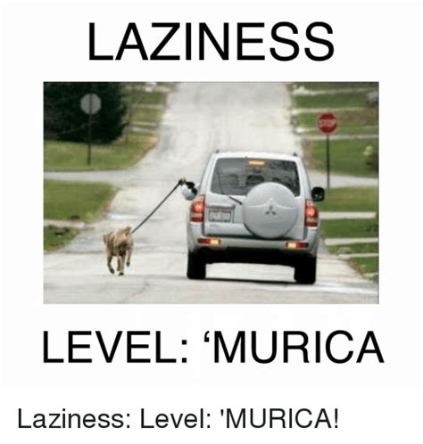 Funny Lazy Memes - laziness level murica laziness level murica funny meme