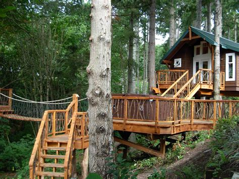 cool tree houses 18 amazing tree house designs mostbeautifulthings