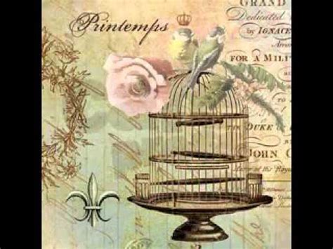 shabby chic bird pictures shabby chic bird cage ideas