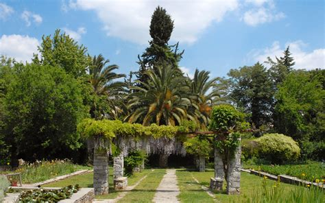 Botanical Gardens Athens by Botanical Garden Athens Overlooked Treasure Greece Is